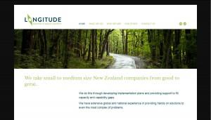Longitude Consulting