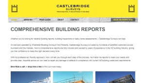 Castlebridge Surveys